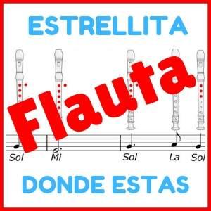 notas de flauta estrellita donde estas