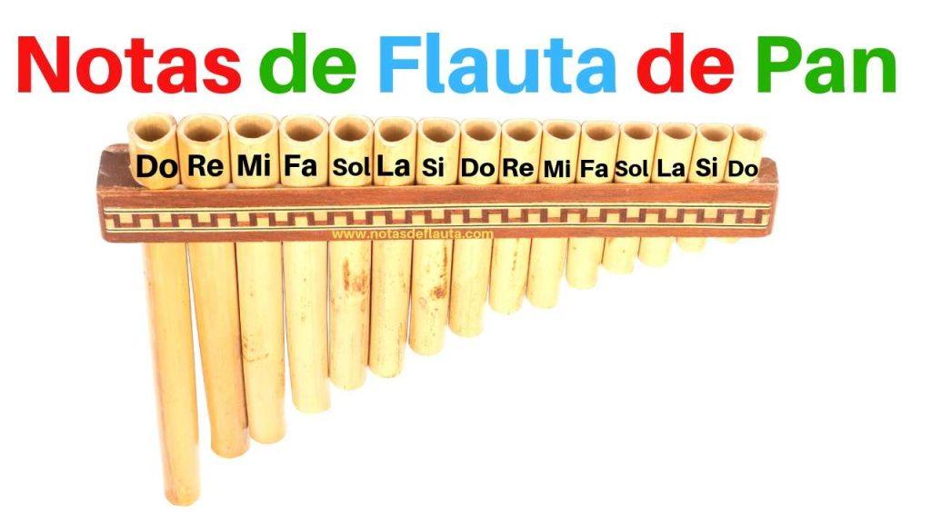 flauta de pan notas